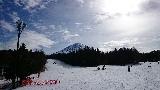 スキー (5)