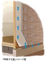 「呼吸する壁」イメージ断面図
