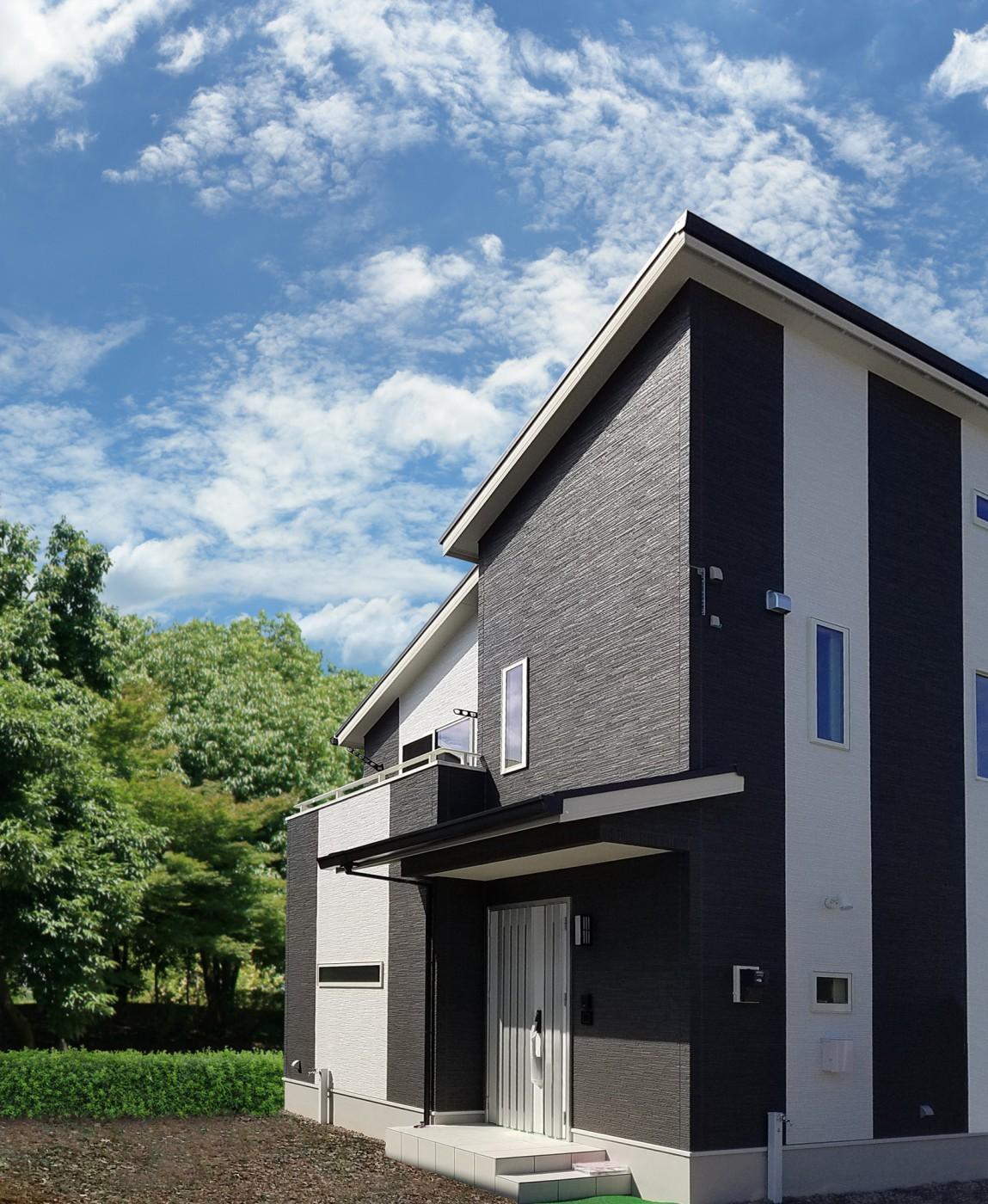 メインの黒と縦ラインのアクセントの白と片流れ屋根がシャープでモダンな建物を演出しています。